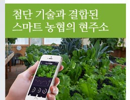 농업용 어시스트 슈트를 시작으로 스마트 농업용 로봇 등 센서 기술과 로봇 공학이 융합된 스마트 농업에 대해 살펴보기로 한다.